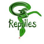 GS Reptiles